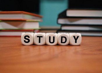 為什麼想去菲律賓學英文